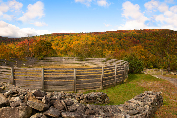 Empire stables of Putnam Valley is equipped with the round pen for exercising your horse