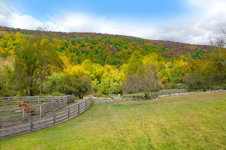 Empire stables of Putnam Valley has an amazing view overlooking the valley